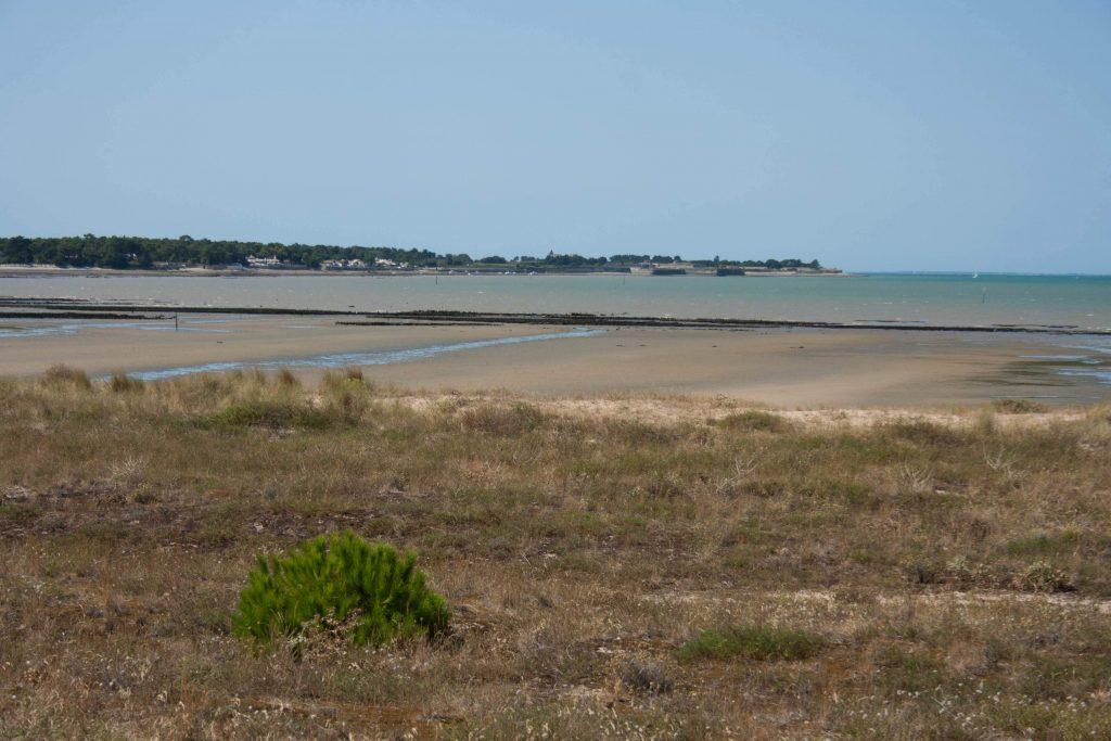 SWOB 2018 - île de ré, marée basse